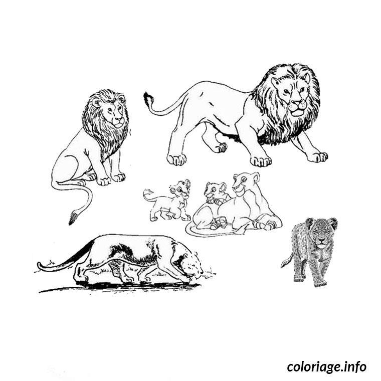 Coloriage Animaux Afrique Jecoloriecom