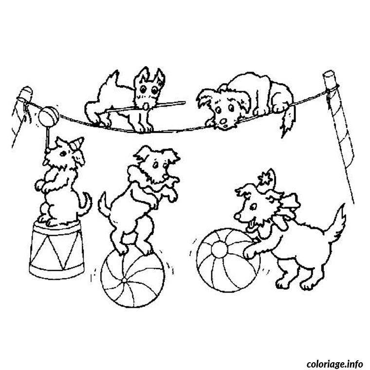 Coloriage animaux cirque dessin - Coloriages cirque ...