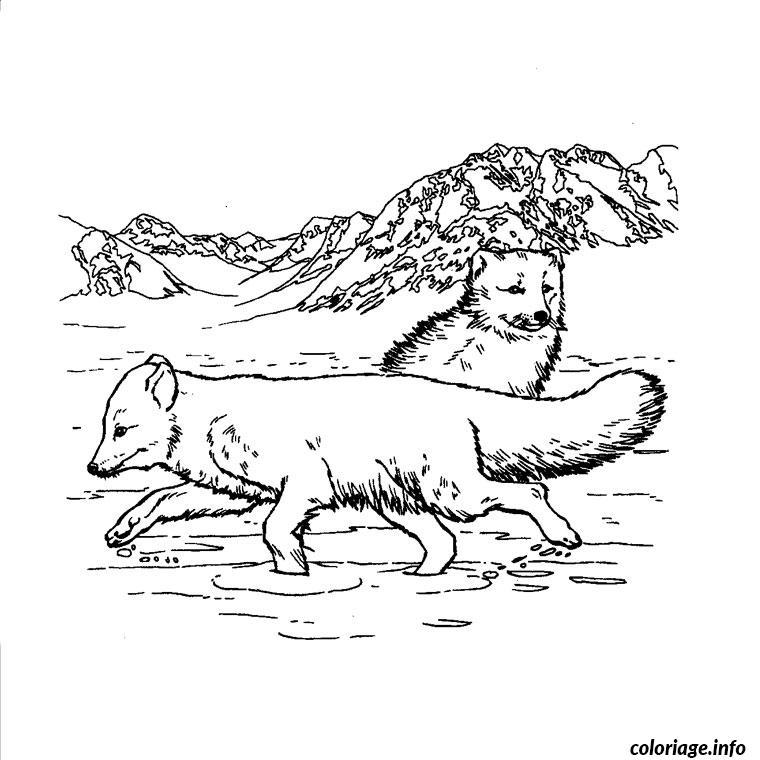 Coloriage animaux et nature dessin - Coloriage nature a imprimer ...