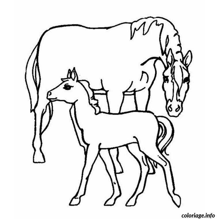 Coloriage animaux chevaux dessin - Dessin de chevale ...