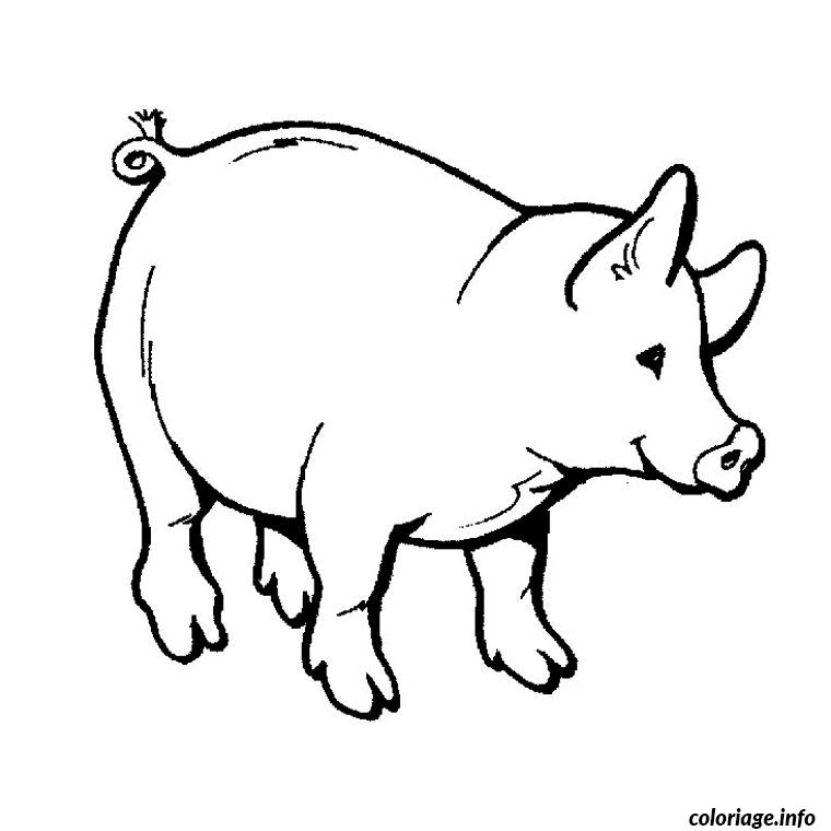 Coloriage cochon sauvage dessin - Cochon a dessiner ...