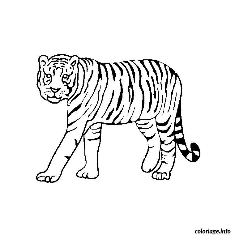 Coloriage animaux tigre - Image dessin tigre ...