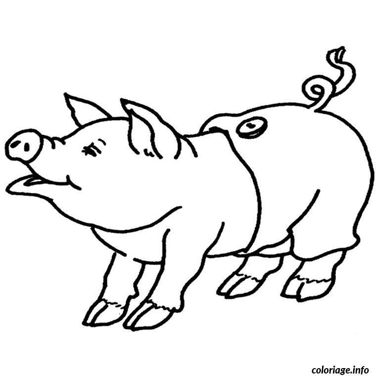 Coloriage cochon dessin - Cochon a dessiner ...
