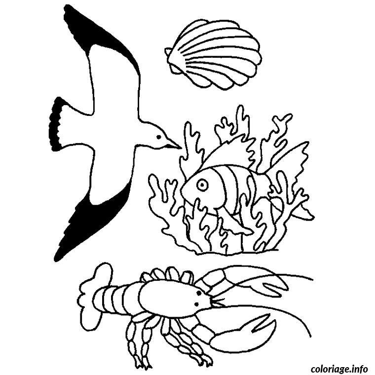 Coloriage Animaux Mer.Coloriage Animaux De La Mer Dessin