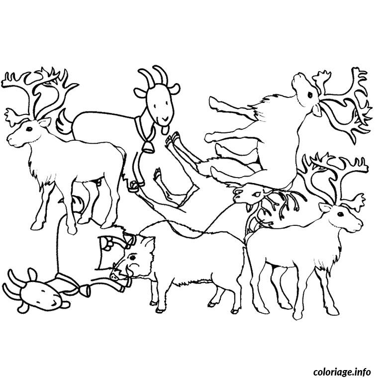 Coloriage animaux pole nord dessin - Animaux pole nord ...