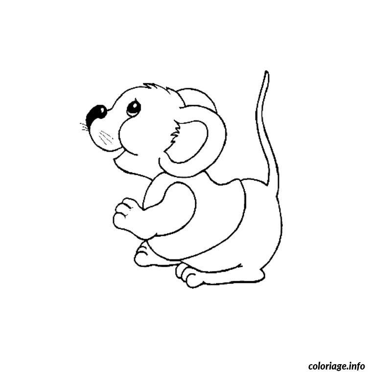 image animaux rigolo dessin