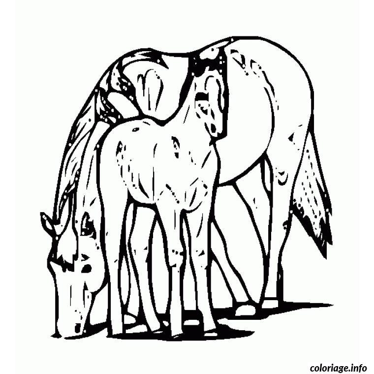 Coloriage cheval et son poulain dessin - Coloriages cheval ...