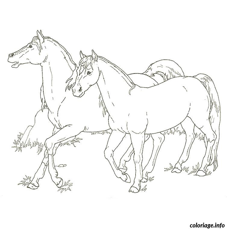 Coloriage cheval et poulain dessin for Disegni di cavalli da stampare e colorare