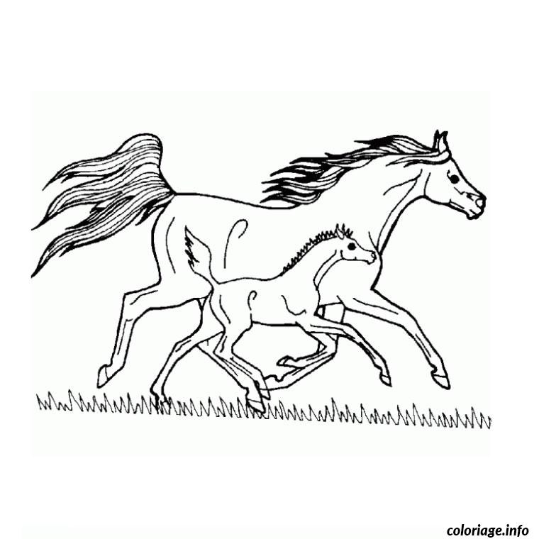 Coloriage Cheval Grand Galop Jecolorie Com