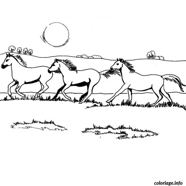 Coloriage chevaux galop - Chevaux dessins ...