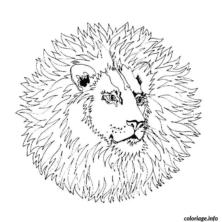Coloriage Mandala Lion Dessin