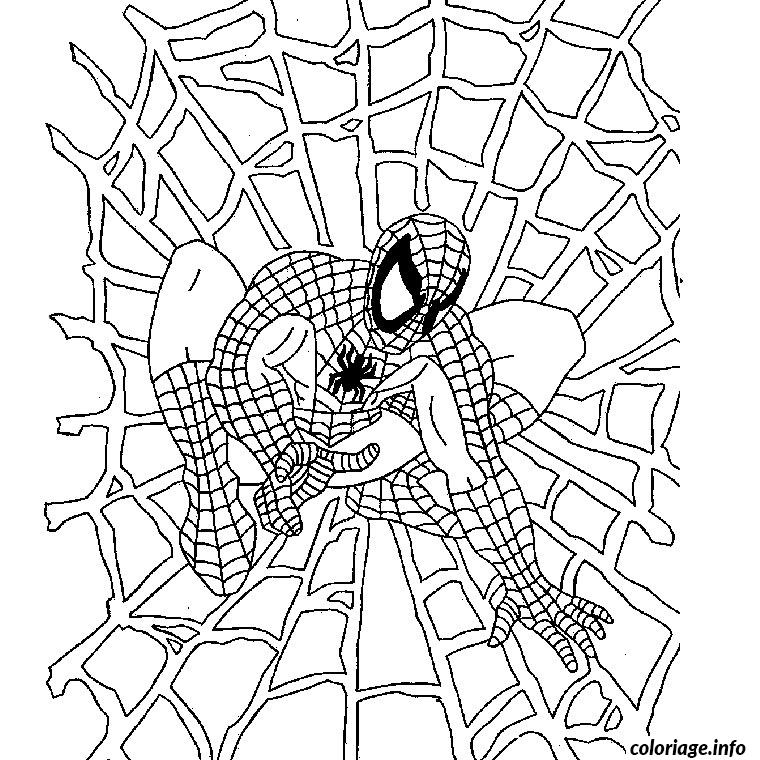 Coloriage halloween spiderman toile araignee - Araignee dessin ...