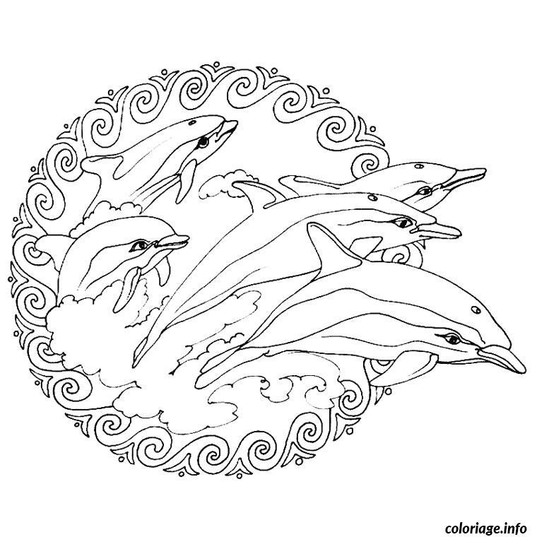 Extrêmement Coloriage Dauphin Coeur dessin BY18