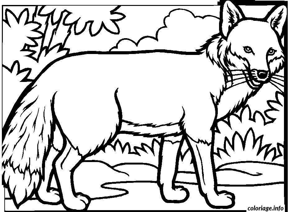 Coloriage renard dans la foret - Dessin renard ...