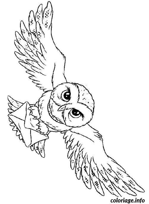 Coloriage hedwige dessin - Dessin de chouette facile ...