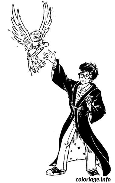 Coloriage harry potter et sa chouette hedwige dessin - Chouette hedwige ...