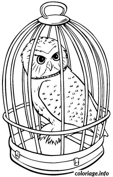 Coloriage Facile Harry Potter.Coloriage Hedwige Chouette En Cage Jecolorie Com