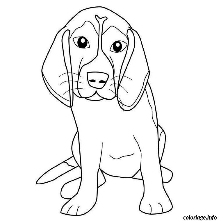 Coloriage Chien Beagle Dessin