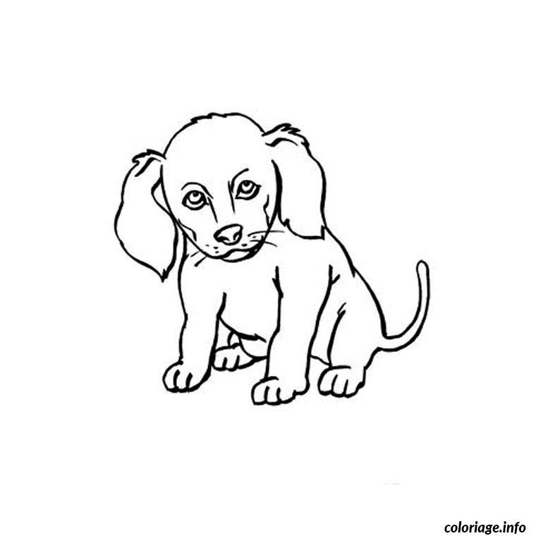Coloriage chien chiot dessin - Coloriage chiot ...