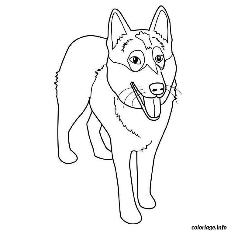 Dessin chien husky Coloriage Gratuit à Imprimer