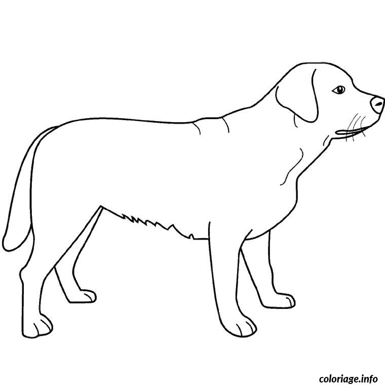 Coloriage chien labrador dessin - Cane da colorare le pagine libero ...