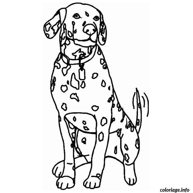 chien dalmatien coloriage dessin 2159