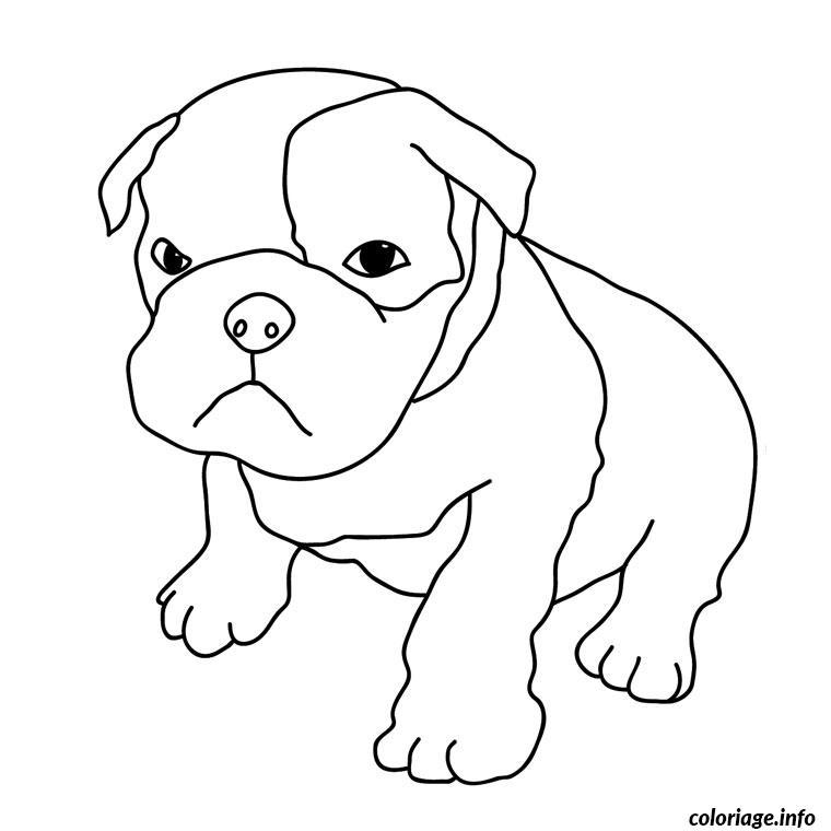 chiot boxer coloriage 2156