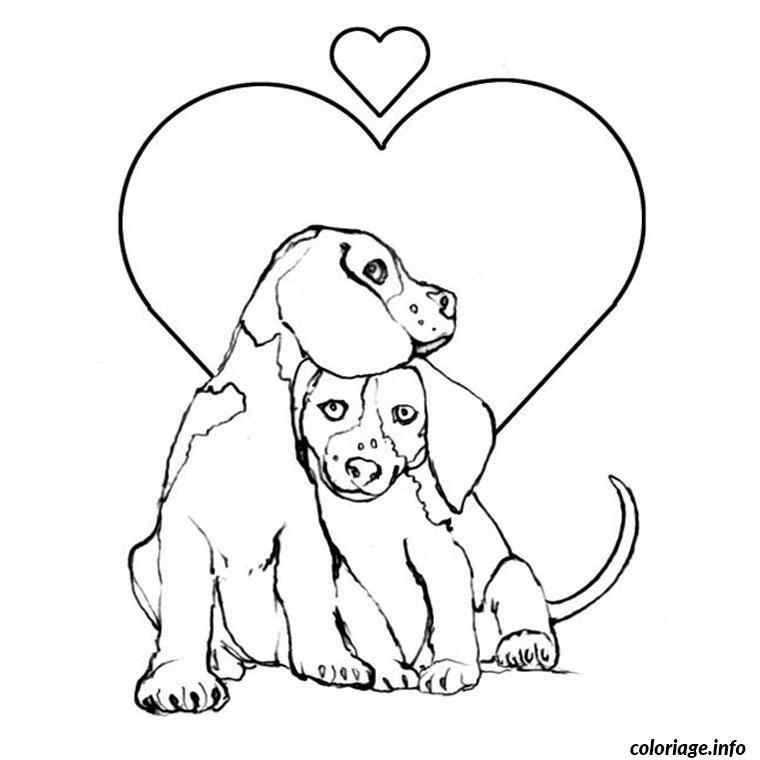 Coloriage chien et chiot - Chiot beagle gratuit ...