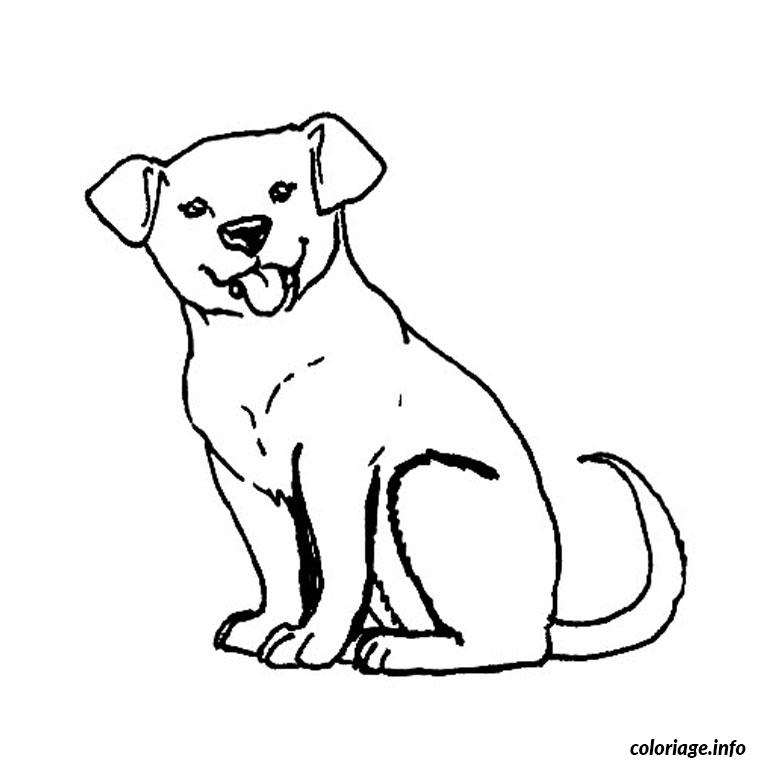 Coloriage Chiot Labrador Dessin