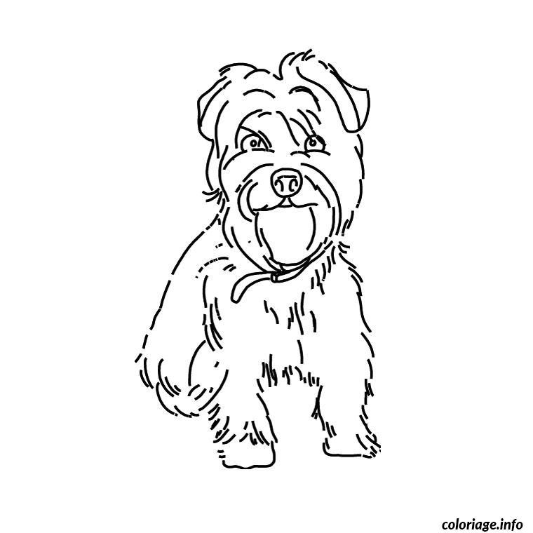 Coloriage chien yorkshire dessin - Coloriage de chien ...