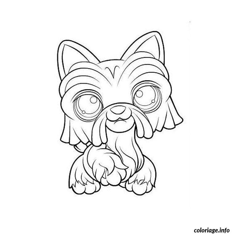 Coloriage pet shop chien - Coloriage pet ...