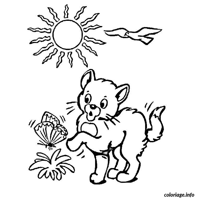 Coloriage chaton dessin - Un chat a colorier ...