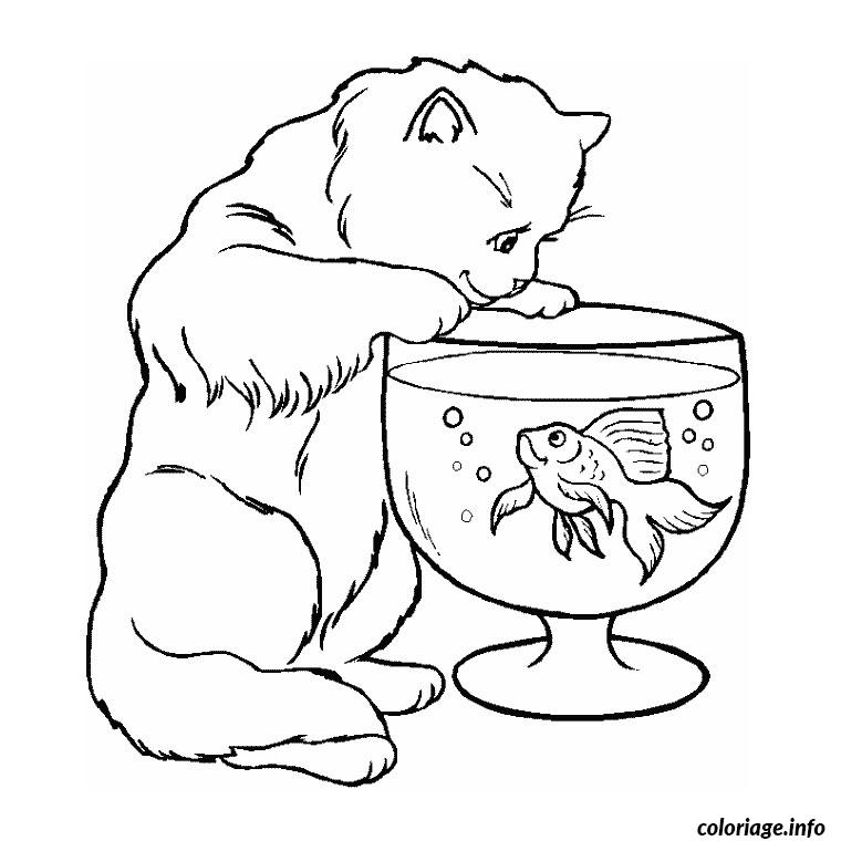 Coloriage poisson chat dessin - Jeux de coloriage de chat ...