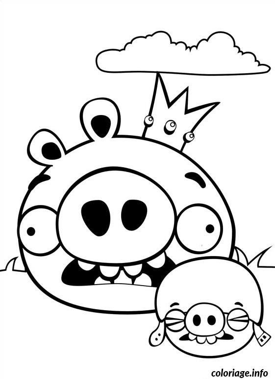 Coloriage deux angry birds cochons peureux dessin - Dessin a colorier angry bird ...