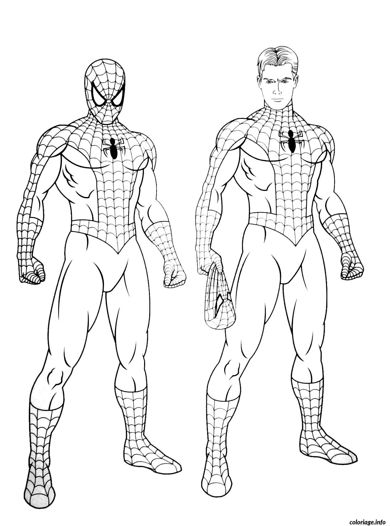 Coloriage Spiderman 224 Dessin Spiderman à imprimer