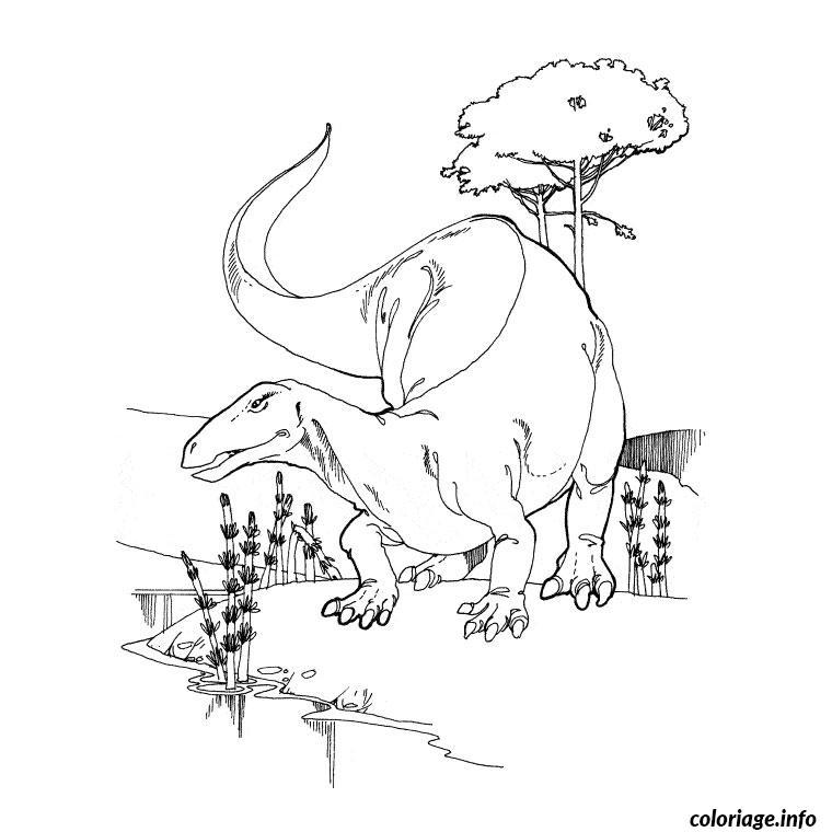 Coloriage dinosaure king terry - Dessin de tyrannosaure ...