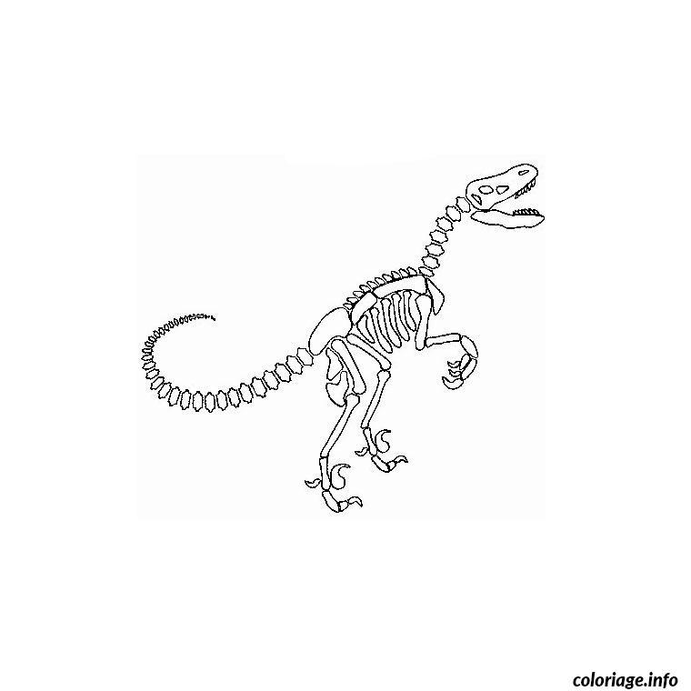 Coloriage dinosaure squelette dessin - Coloriage de dinosaure a imprimer gratuit ...