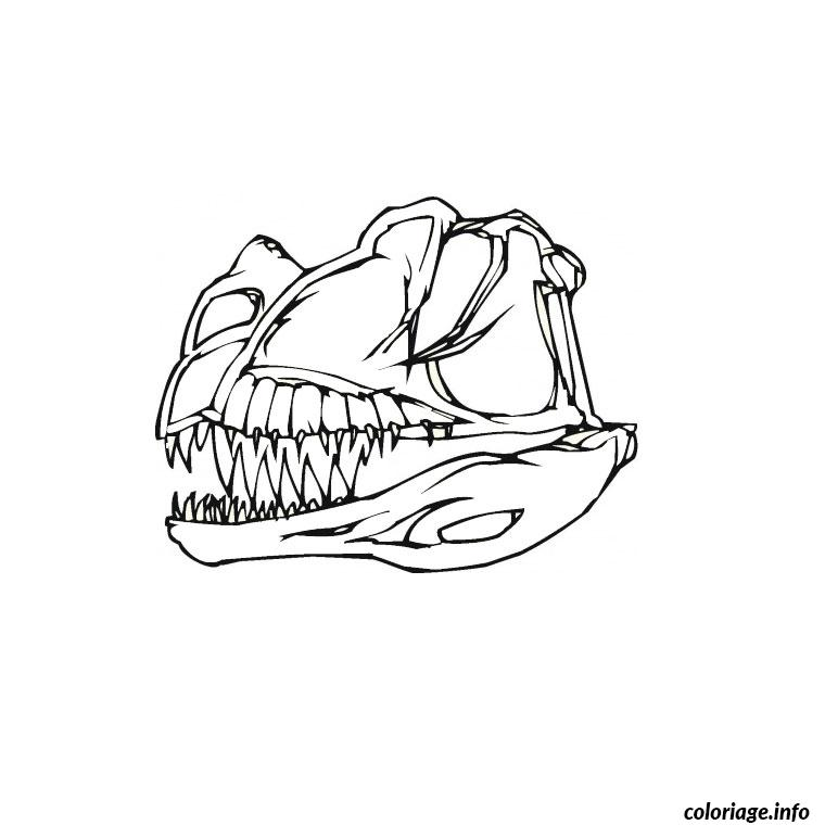 Coloriage os de dinosaure dessin - Image dinosaure a colorier ...