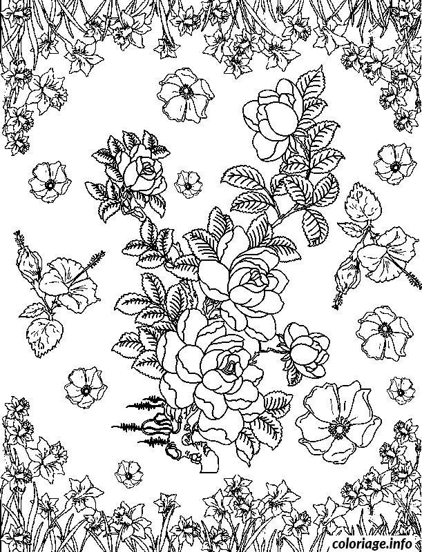 Dessin adulte dessin 63 Coloriage Gratuit à Imprimer