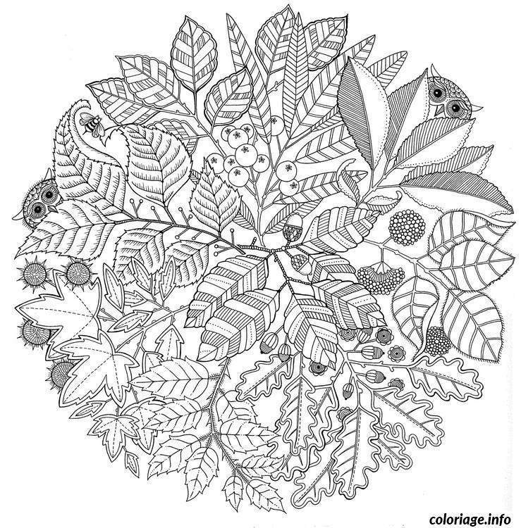 Dessin dessin adulte antistress inspiration zen 62 Coloriage Gratuit à Imprimer