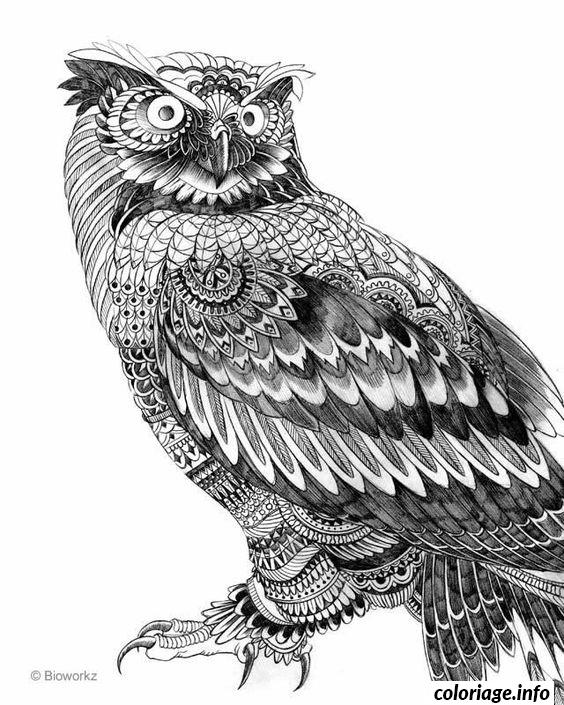 Coloriage Difficile Adulte Hibou Animaux Dessin