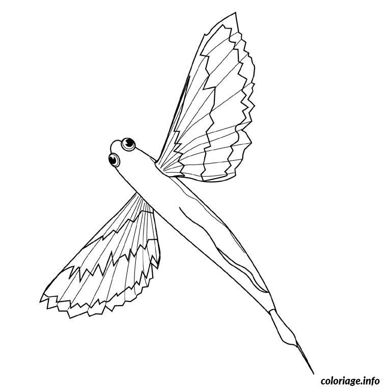 Coloriage Animaux Volants.Coloriage Poisson Volant Dessin