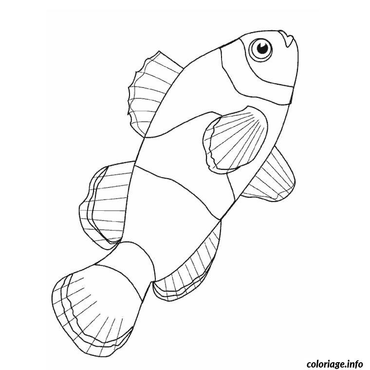 poisson clown coloriage dessin 9904
