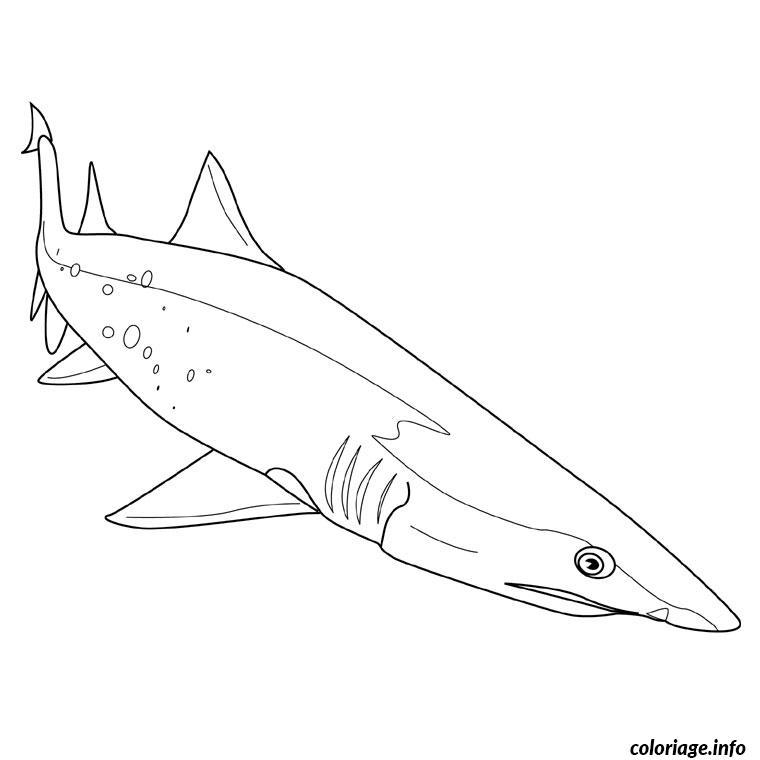 Coloriage Requin Scie Jecolorie Com