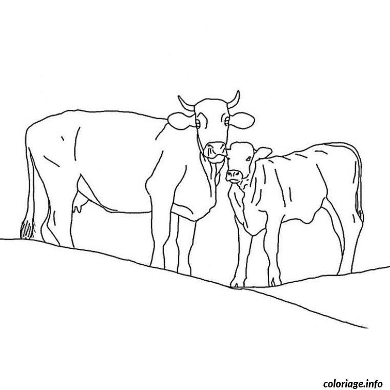 Coloriage vaches - JeColorie.com