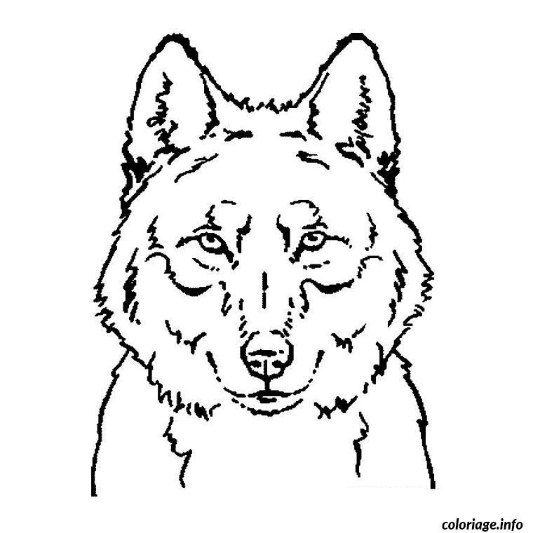 Coloriage tete de loup dessin - Image loup dessin ...