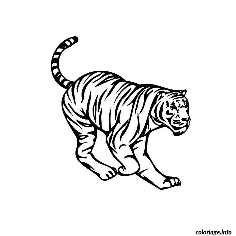 Coloriage tigre de siberie dessin - Image dessin tigre ...
