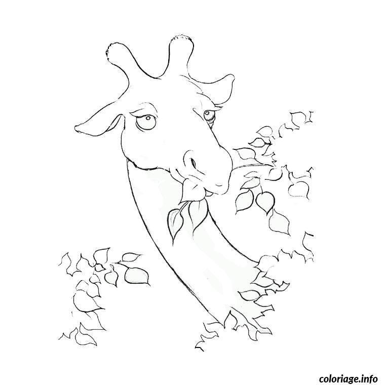 Coloriage Girafe Sans Tache.Coloriage Girafe Sans Tache Jecolorie Com