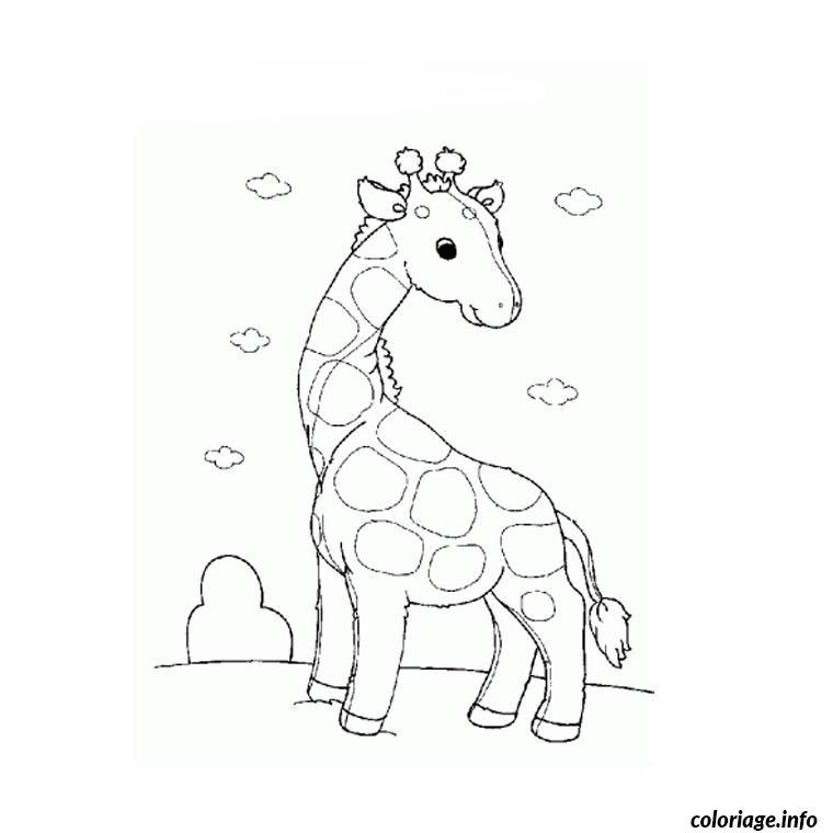 Coloriage Girafe Pet Shop Dessin à Imprimer