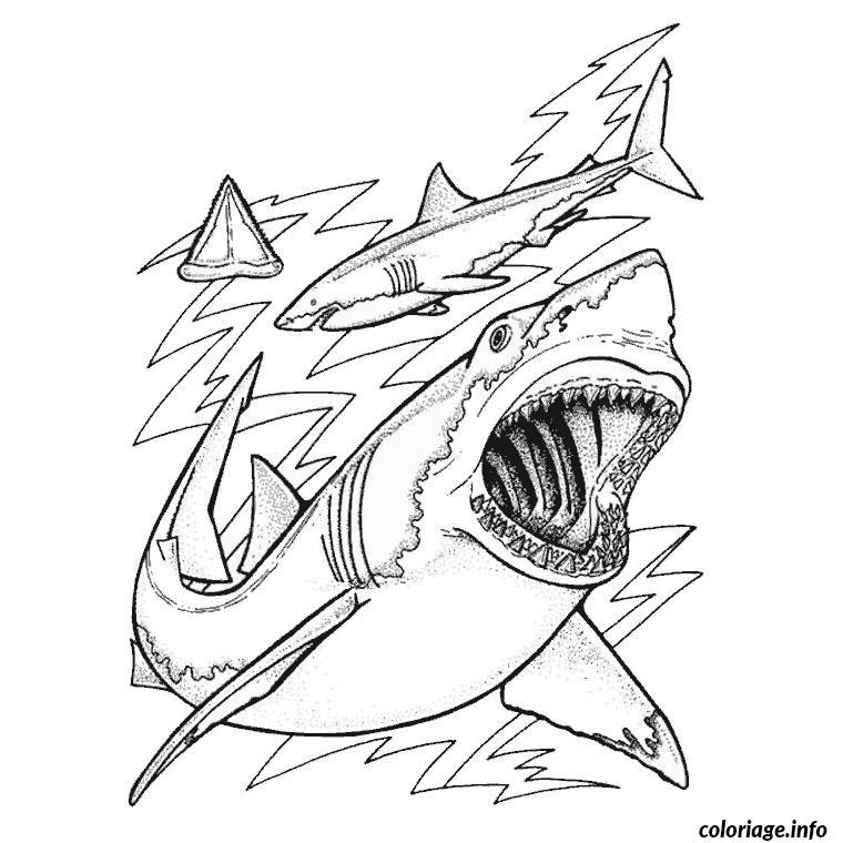 Coloriage Requin Baleine Jecolorie Com